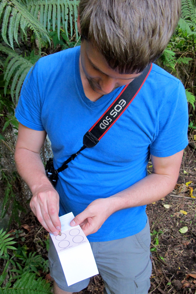 David Sischo collects DNA samples in the field.  (Photo credit: Brenden Holland).
