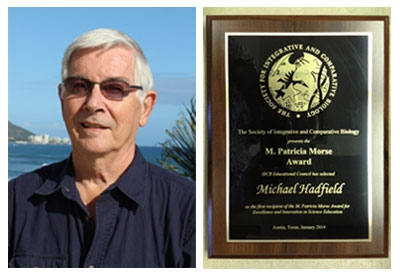Dr. Michael Hadfield is the 2014 recipient of the SICB M. Patricia Morse Award for Excellence and Innovation in Science Education.  (Photo credit: Michael Hadfield).